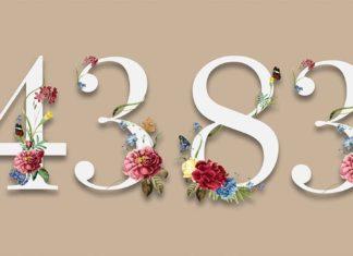 Afarinesh Birthday